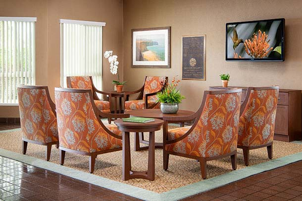 Nice comfortable chairs around a large coffee table - large image